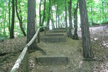 Wandelroute rode wandeling 2 9 km wandelen in berg en dal - Trap helling ...