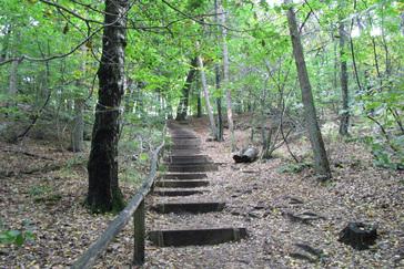 Wandelroute rode wandeling 2 9 km wandelen in berg en dal - Trap in een helling ...