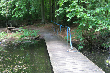Kunst in het Waterloopbos
