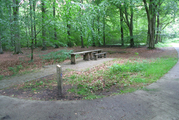 Picknickbank Waterloopbos